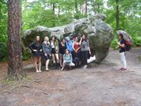 Elephant Rock, Fontainbleau Forest